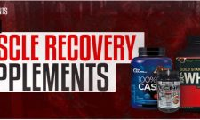 top muscle recovery supplements