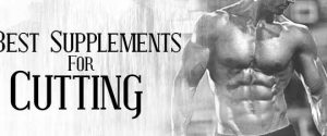 supplements for losing fat