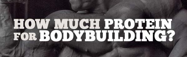 bodybuilding protein consumption